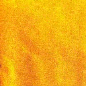 Amarillo pollito